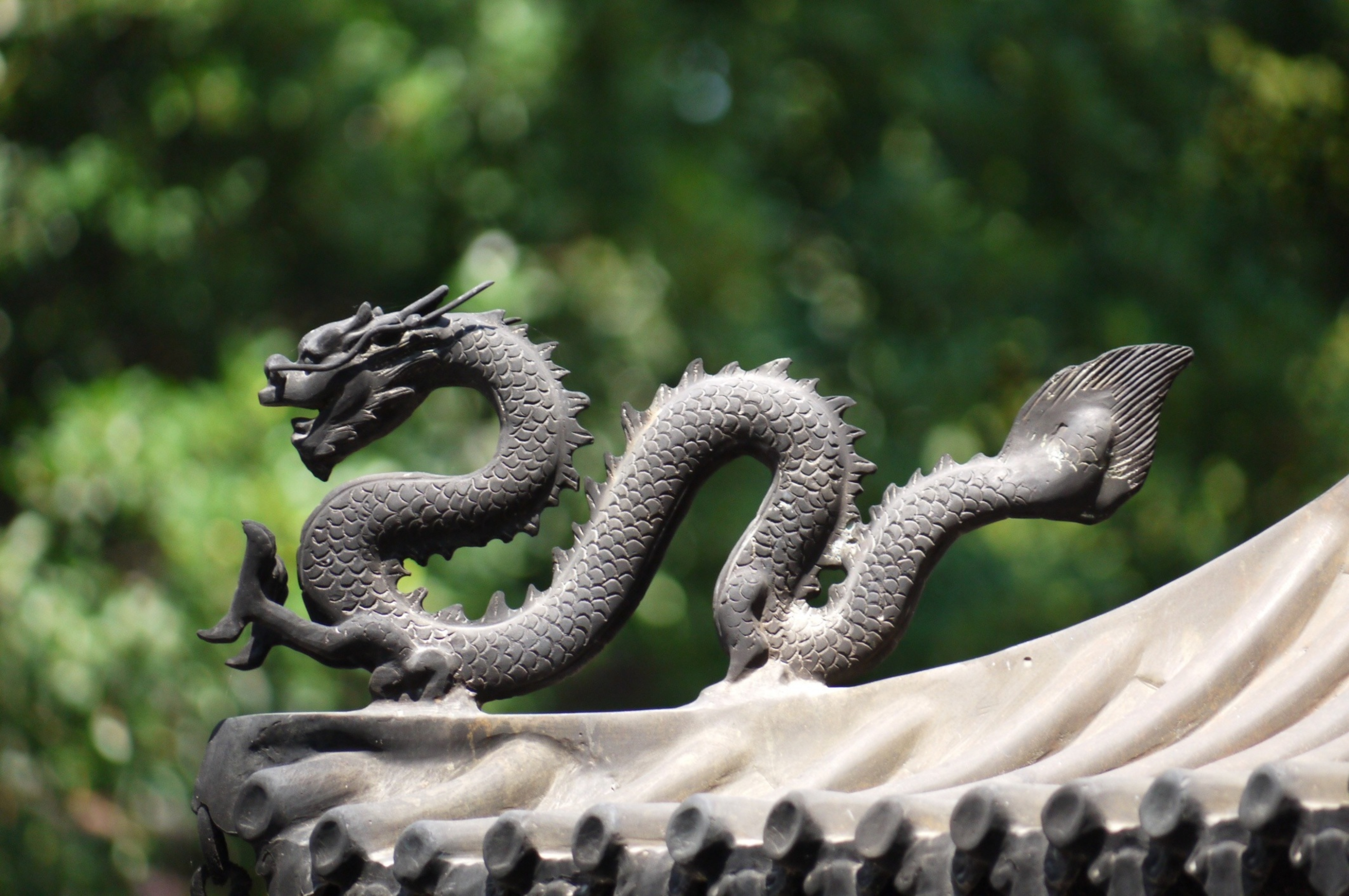 Grey Chinese dragon on roof
