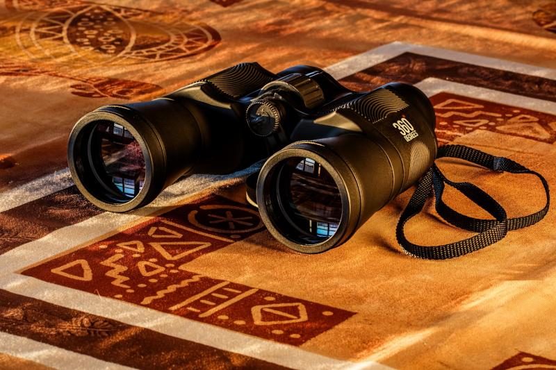 Binoculars on beige/maroon textile